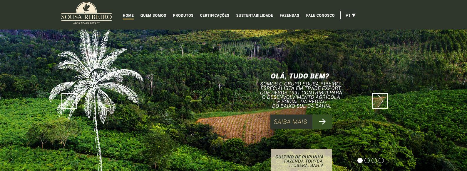 Imagem do projeto Novo site Souza Ribeiro