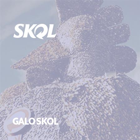 Imagem do projeto Galo Skol